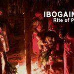 ibogaine_banner4-2.jpg