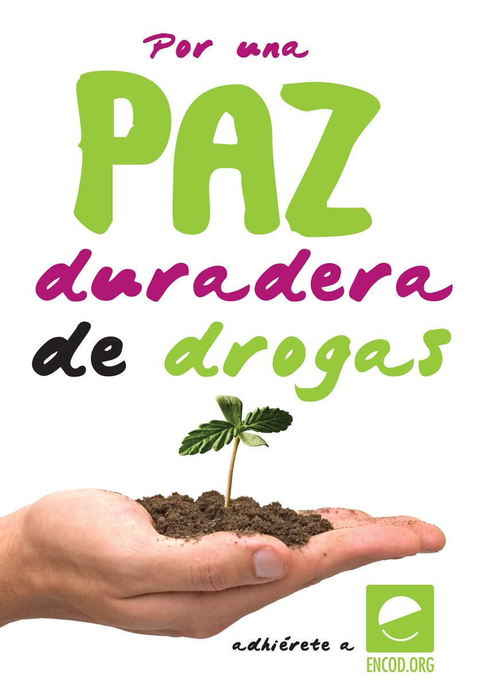 PAZweb.jpg