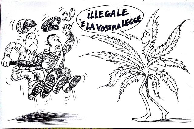 illegalelalegge_copia.png