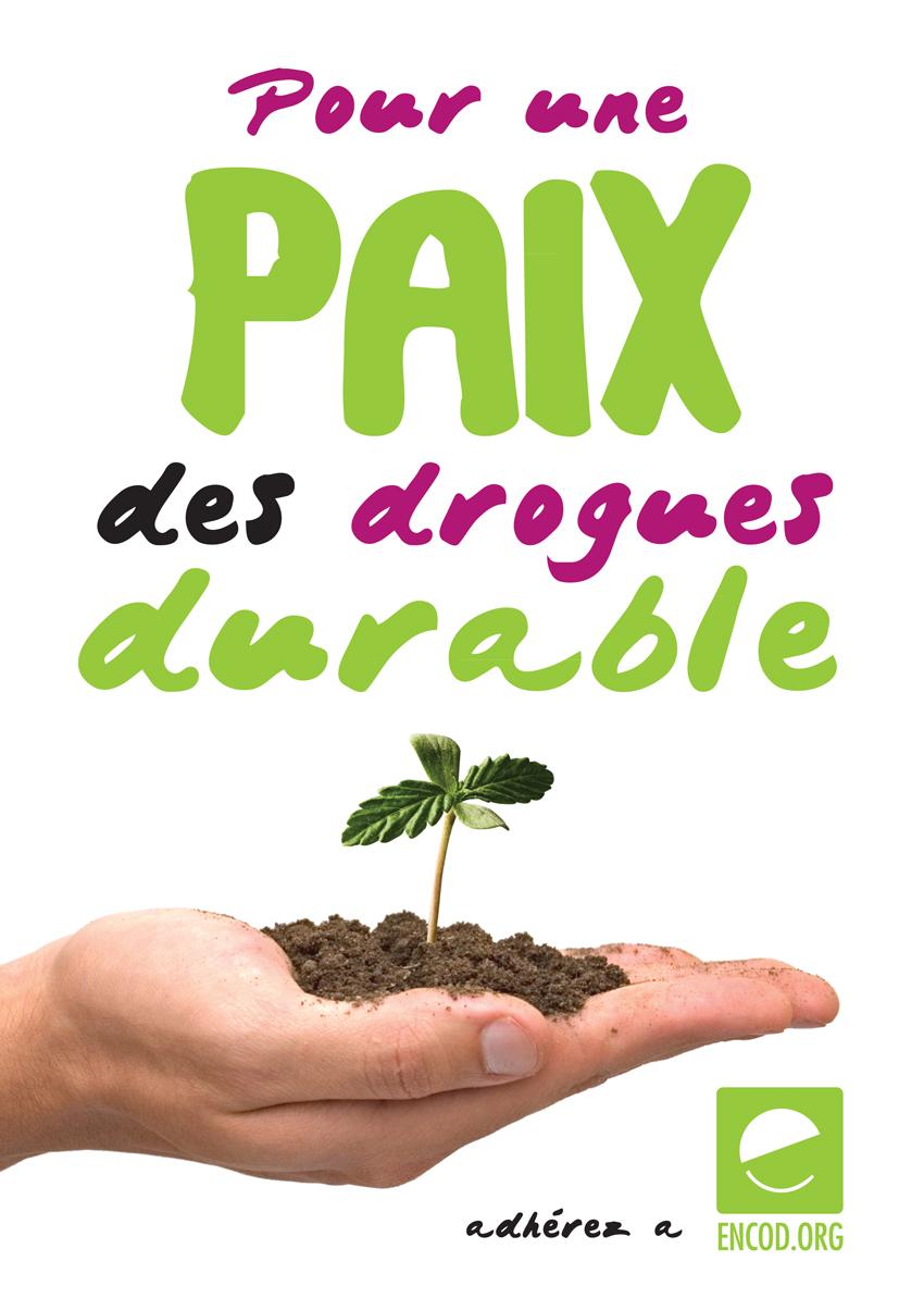 PAIXweb.jpg