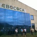 ebococa-2.jpg