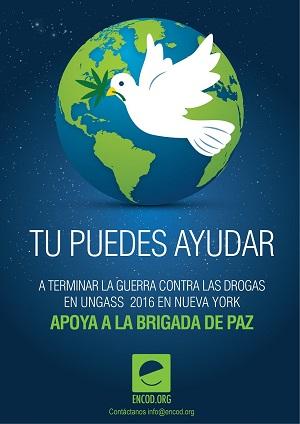tu_puedes_bull.jpg